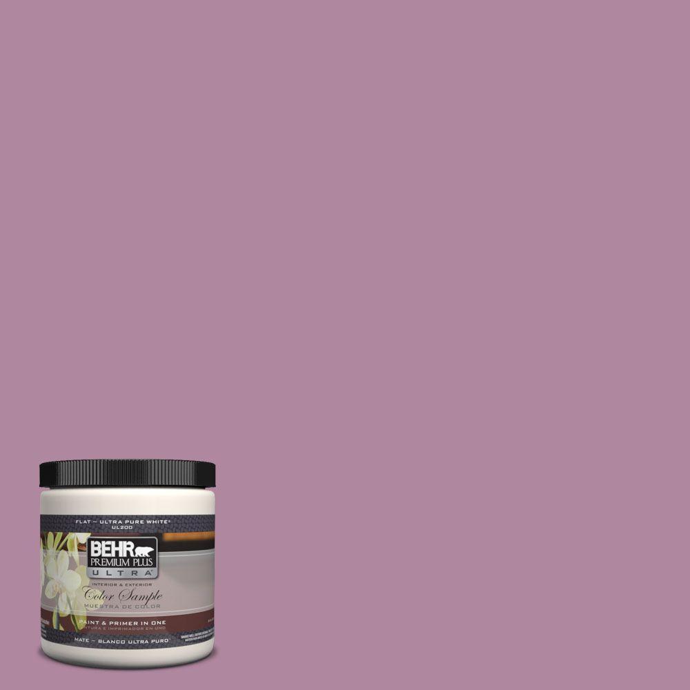 BEHR Premium Plus Ultra 8 oz. #690D-5 Winsome Rose Interior/Exterior Paint Sample