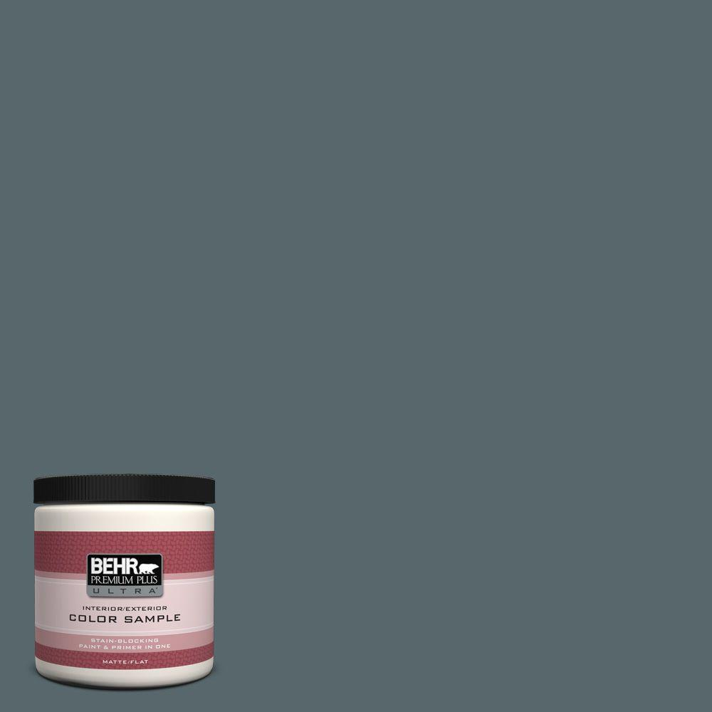 8 oz. #N470-6 Whale Gray Matte Interior/Exterior Paint and Primer in