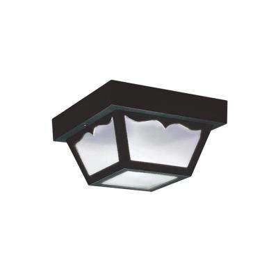 Outdoor Ceiling Clear 2-Light Outdoor Flush Mount with LED Bulbs