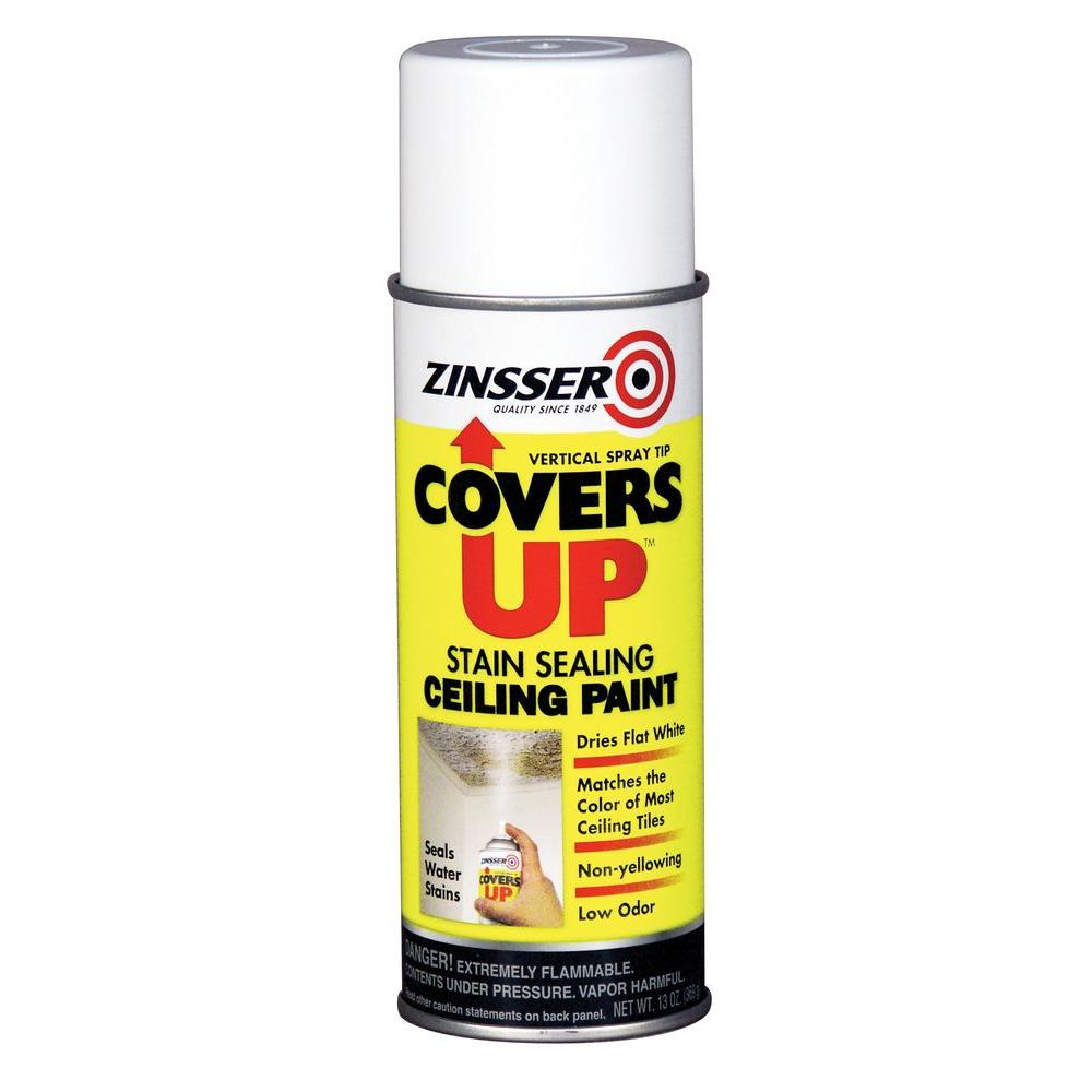 Zinsser 13 oz covers up paint and primer in one spray for ceilings covers up paint and primer in one spray for ceilings dailygadgetfo Images