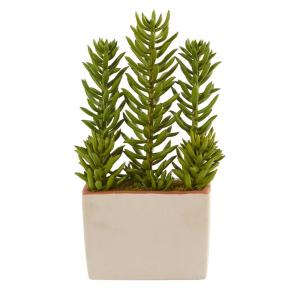 Nearly Natural 17 In Indoor Succulent Artificial Plant With