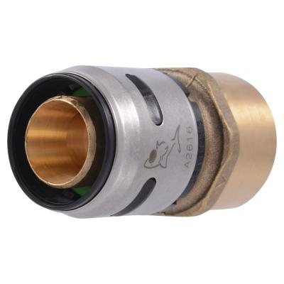 1 in. Push-to-Connect EVOPEX x FIP Brass Adapter Fitting