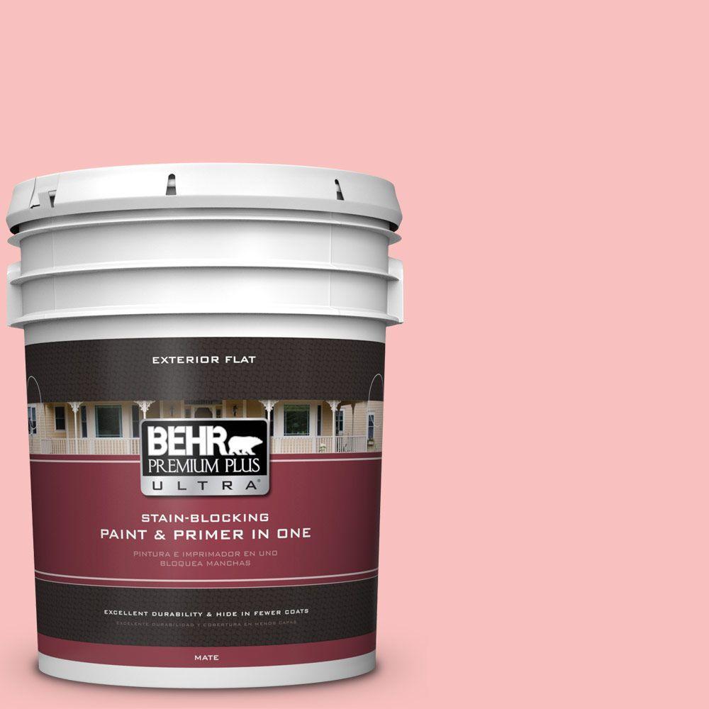 5-gal. #160A-3 Pink Hydrangea Flat Exterior Paint
