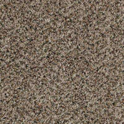 Carpet Sample - Briarmoor I - Color Georgian Sliver Texture 8 in. x 8in.