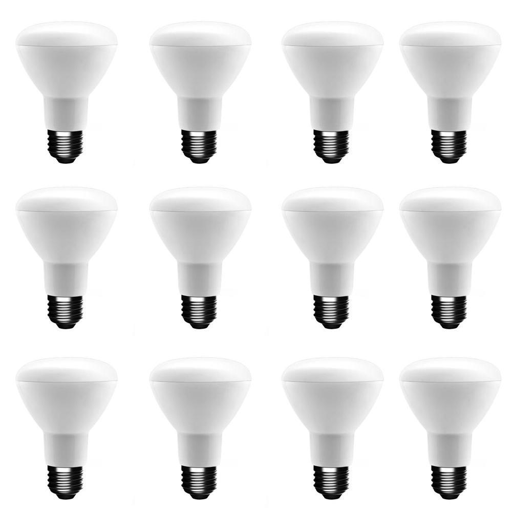 50-Watt Equivalent R20 Dimmable ENERGY STAR LED Light Bulb Daylight (12-Pack)