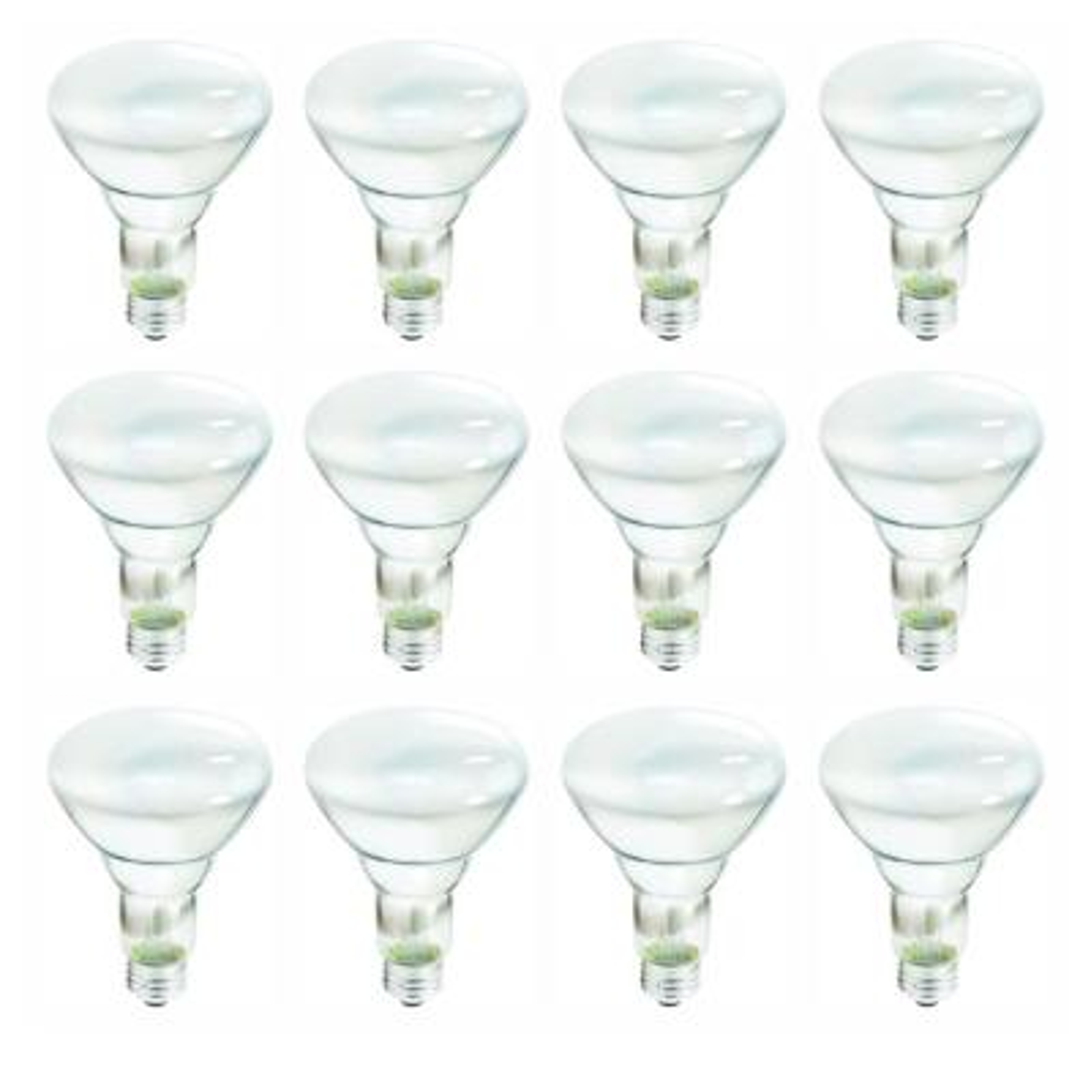 65-Watt Incandescent BR30 Flood Light Bulb Soft White (2700K) (12-Pack)