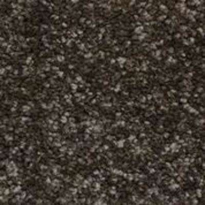 Color Sample - Sycamore I - Color Ebony Texture 8 in. x 8 in.