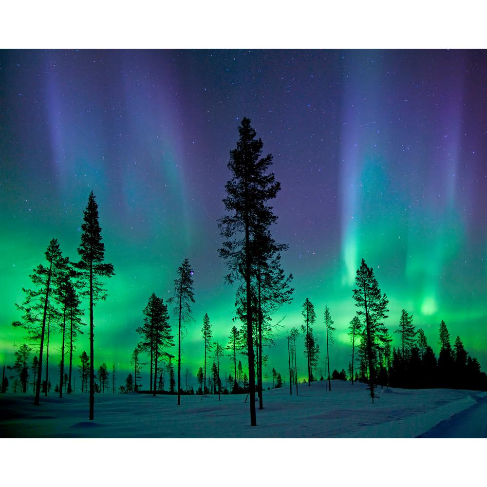 Aurora Borealis/ Northern Lights Wall Mural-WR50512 - The ...
