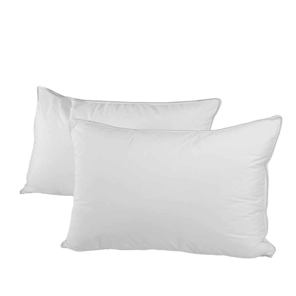ALLERGY SHIELDS Luxurious Down Standard Alternative Pillows (Set of 2)