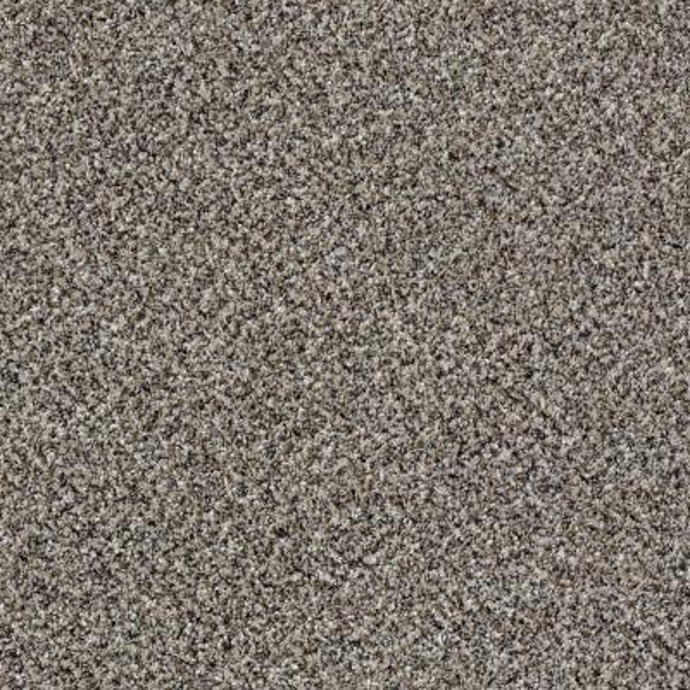 Wholehearted II - Color Hazy Shadow Twist 12 ft. Carpet