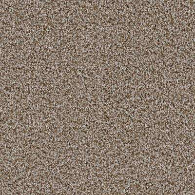 Carpet Sample - Palace II - Color Kidder Texture 8 in. x 8 in.
