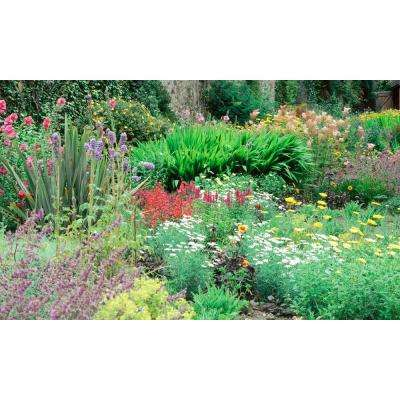 120 in. x 60 in. Window Well Scene - Flower