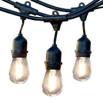48 ft. 2-Watt Outdoor Weatherproof LED String Light with S14 LED Filament Light Bulbs Included