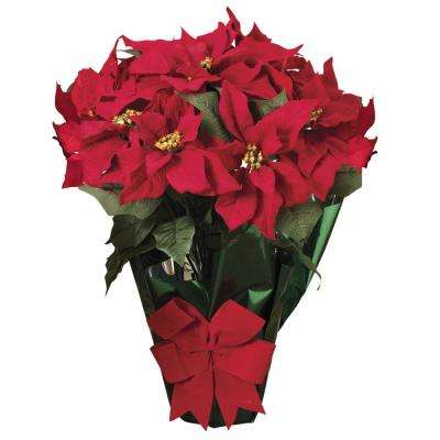 20 in. Potted Red Poinsettia Bush