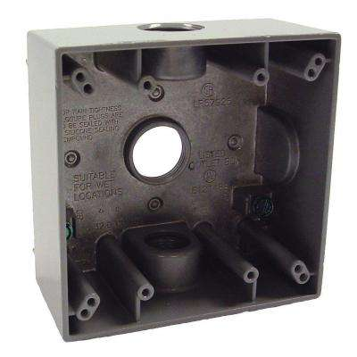 2-Gang Weatherproof Box with Three 3/4 in. Outlets