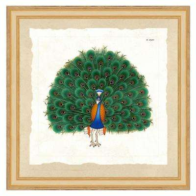 """""""Exotic peacock II"""" Framed Archival Paper Wall Art (24 in. x 24 in. Full Size)"""