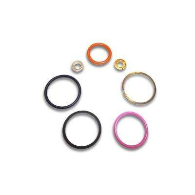 Diesel injector Seal Kit