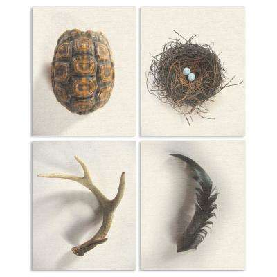 "10 in. x 15 in. ""Woodland Found Objects"" by Daphne Polselli Printed Wood Wall Art"