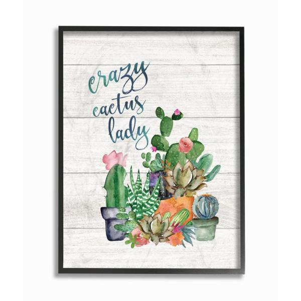 The Stupell Home Decor Collection 16 In X 20 Crazy Cactus Lady