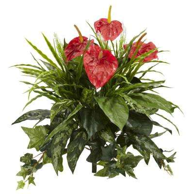 Indoor 24 in. Mixed Anthurium Artificial Plant (2-Set)
