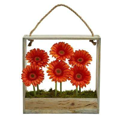 Gerber Daisy Garden Artificial Arrangement in Hanging Wood Frame