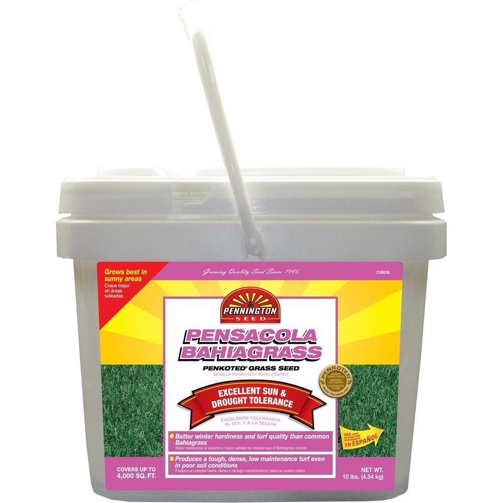 Pennington 10 lb  Pensacola Bahiagrass Grass Seed