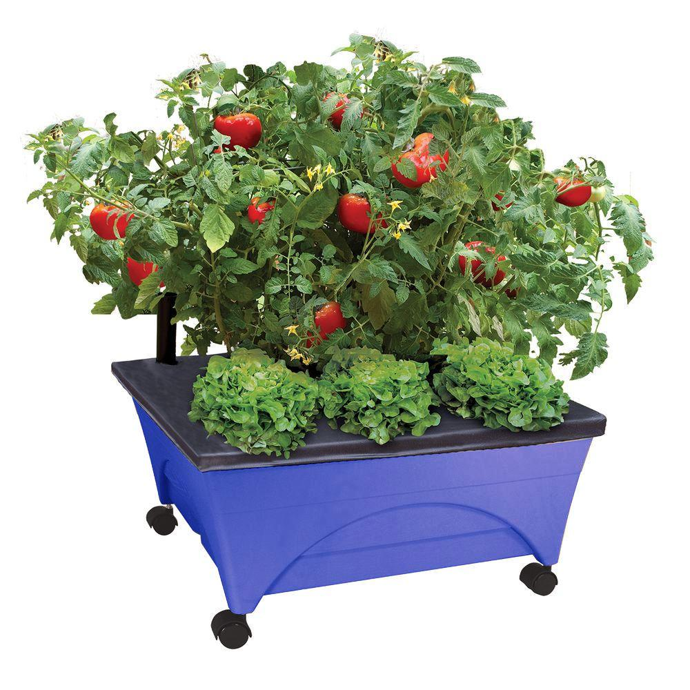 City Pickers 24 5 In X 20 Patio Raised Garden Bed Kit With Watering