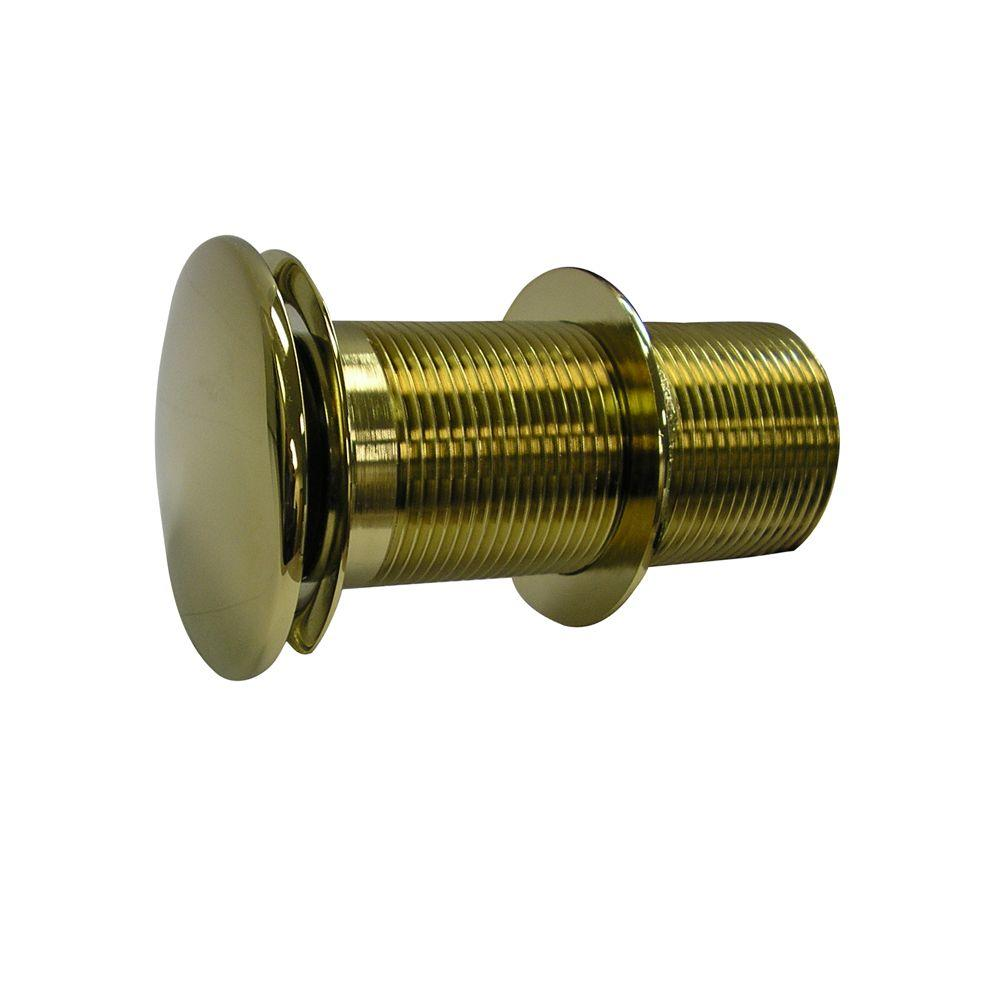 Pegasus Push-Button Pop-Up Umbrella Drain in Polished Brass