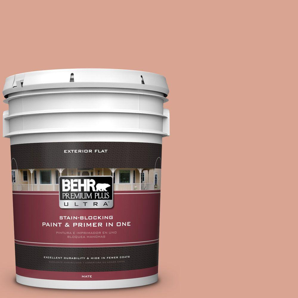 BEHR Premium Plus Ultra Home Decorators Collection 5-gal. #HDC-CT-13 Apricotta Flat Exterior Paint